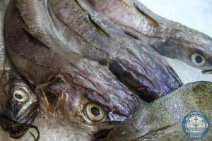Fresh and Fried - Ristorante di Pesce - Talenti - Roma (25)